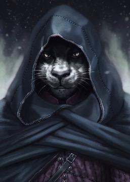 Depth of Night - Tabaxi Rogue